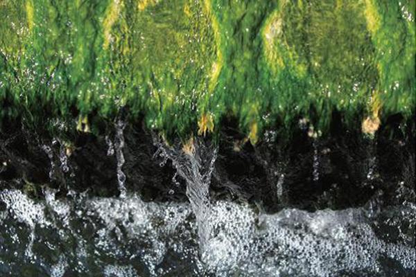 水資源再利用平台成立 節水﹑回收﹑處理優化三管齊下