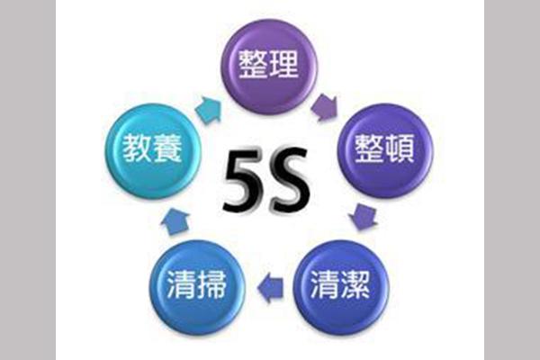 中華紙漿6S活動熱烈開展!