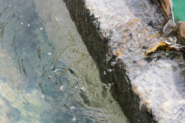 重生的回收水──水資源平台第三季季會