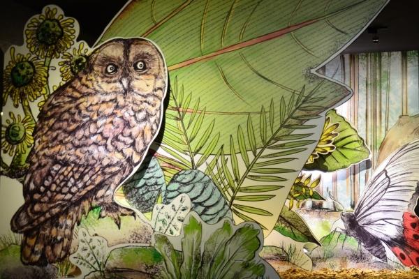 永續華紙 「森林與我」體驗開展